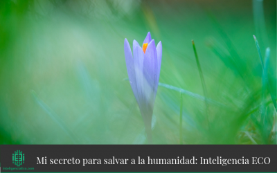 Mi secreto para salvar a la humanidad: Inteligencia ECO