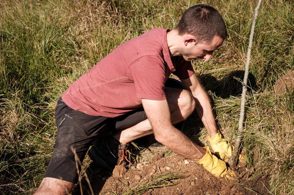 Ignacio F. plantando un árbol en el Picón para compensar la huella de carbono.
